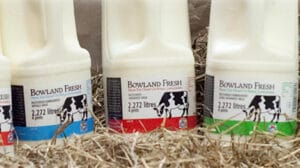 Bowland Fresh Milk