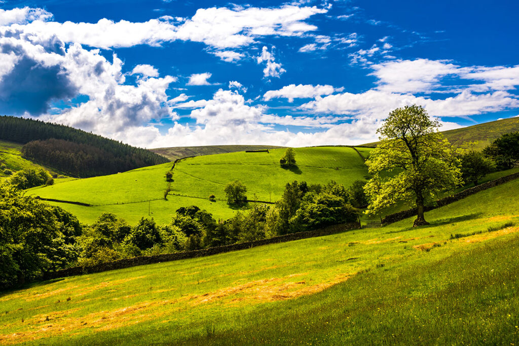 springtime in Forest of Bowland, Lancashire,